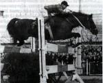 Horse_Etjud-_3big