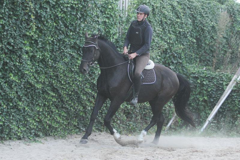 gelaendekl-8613
