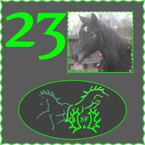 Türchen 23 – Happy Faces ….